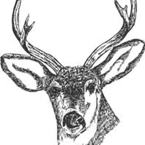 THE DEER ( for J1)