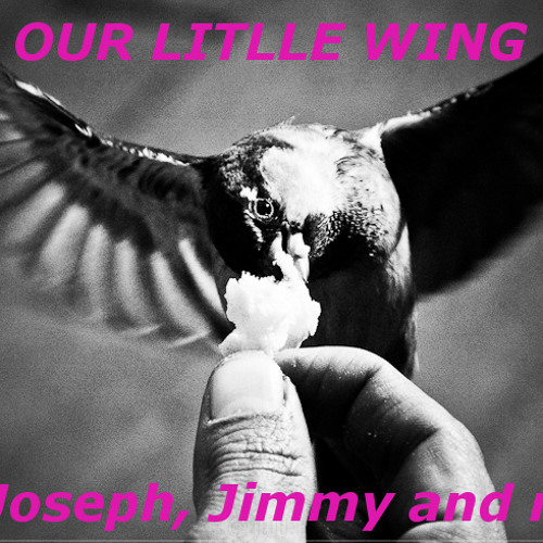 Our Little Wing ( Joseph, Jimmy and me )