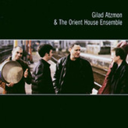 Gilad Atzmon The Orient House Ensemble   Petite Fleur..