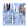 David Banner feat. Chris Brown - Amazing [main]