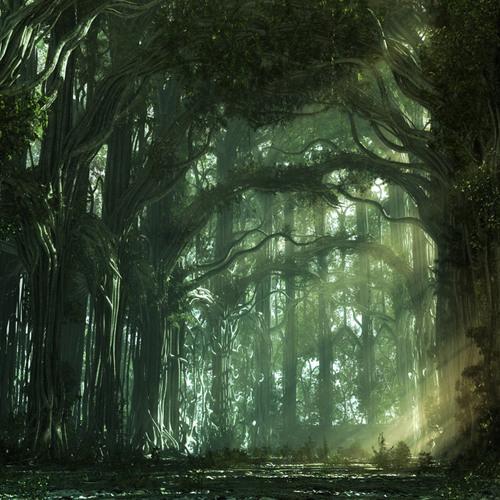 Ian O'Donovan - Forest Secrets *** Free WAV Download ***