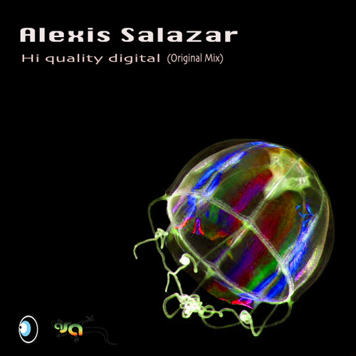 Alexis Salazar - Hi Quality digital