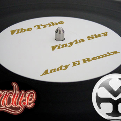 Vibe Tribe - Vinyla Sky (Andy E Remix)