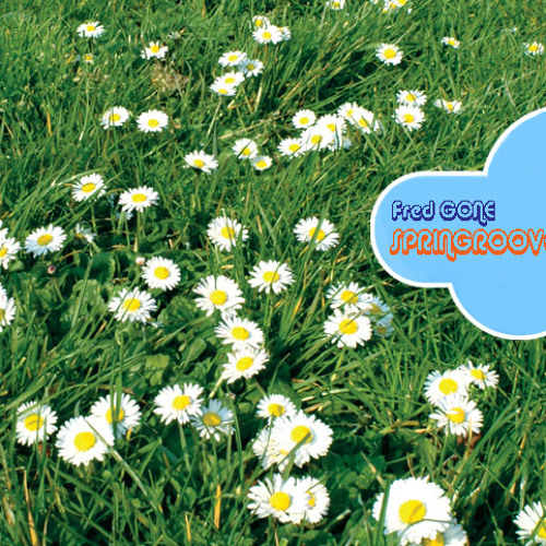 Springroove