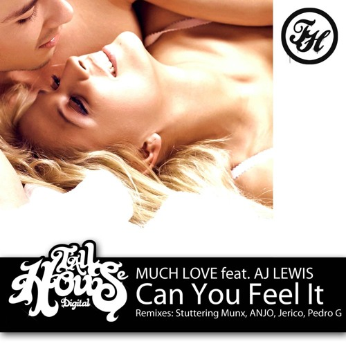 Much Love Ft. AJ Lewis - Can You Feel It (Pedro G Remix)