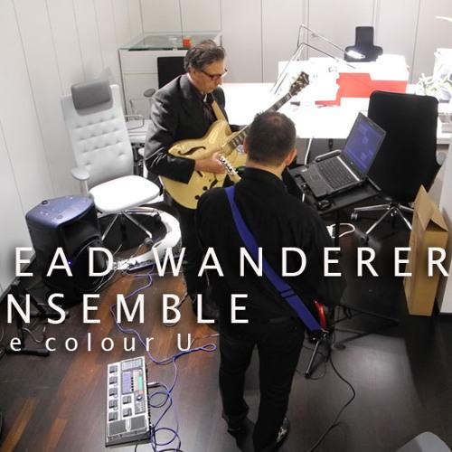 the colour U - Head wanderer