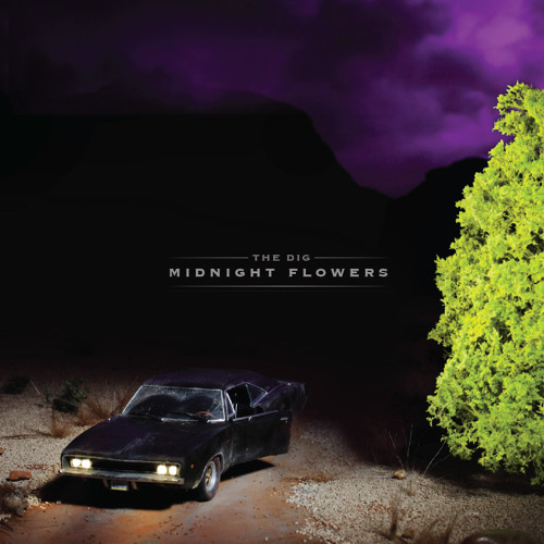 Red Rose in the Cold Winter Ground - Midnight Flowers (2012)