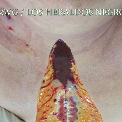Los Heraldos Negros (Excerpt) from split with 886VG