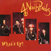 What's Up - Versione Ska [Cover 4 Non Blondes]