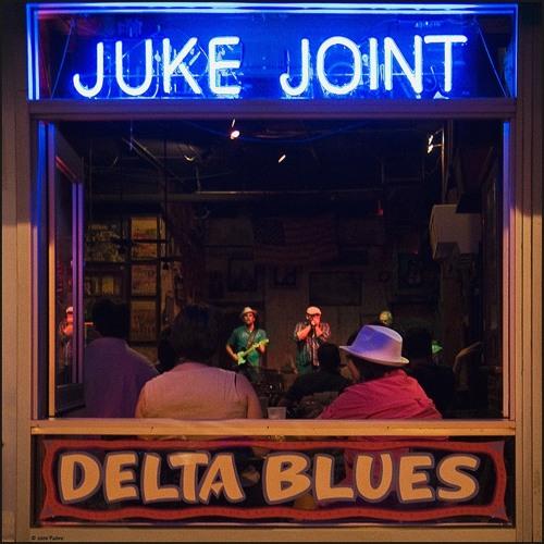 Gonzo Bluesman's Delta Blues Juke Joint