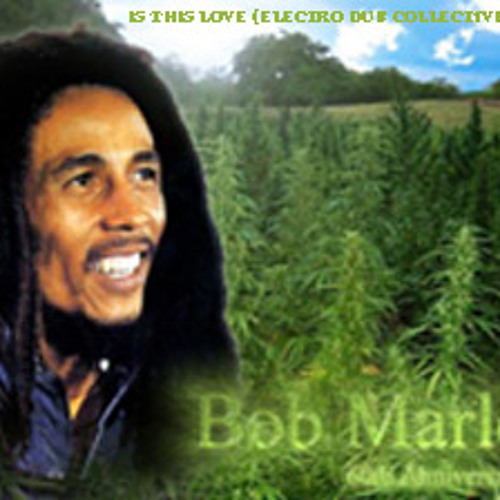 BOB MARLEY - IS THIS LOVE (ELECTRO DUB COLLECTIVE RERUB) PLEASE LEAVE FEEDBACK!