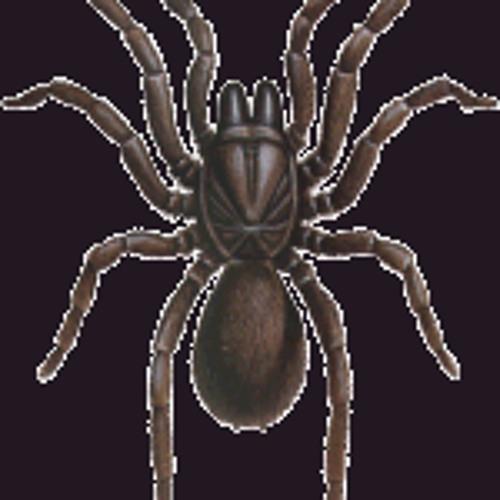 WILL BAILEY - SPIDER [support from Munchi, Calvertron, Downlink, Tittsworth]