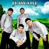 Hawari - labuhan hati (album satu dekade)