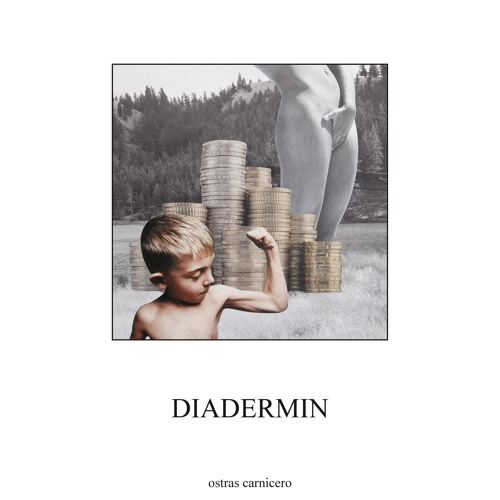 "Diadermin ""Nicochips"""