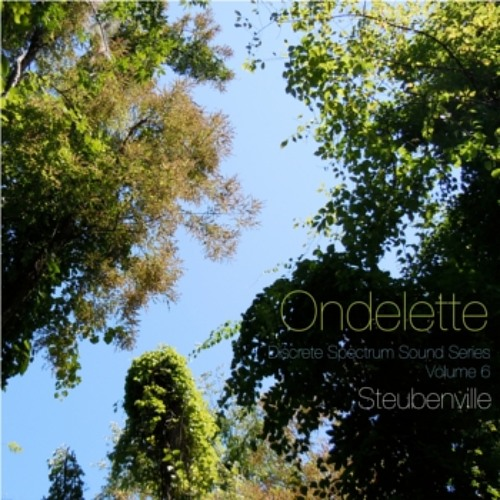 Ondelette - Congregation of Starlings