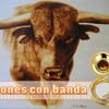 El Toro Viejo - Banda La Reina De Jerez (Sones Con Banda)™