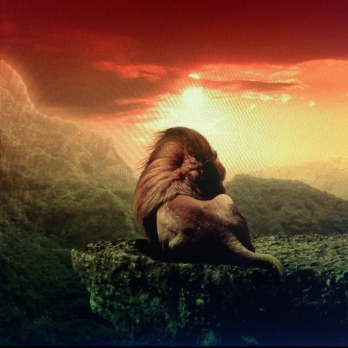 Wise Man - Winston Jarret - Reggae at Arte na Cara!