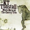 Black Horse and a Cherry Tree (Cover of KT Tunstall)