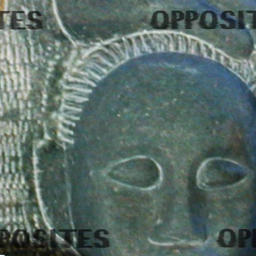 Robert Cronberg Presents...(Vol. 1) Opposites
