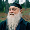 IN C #4 for Terry Riley
