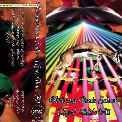 Welcome Back Sailors - Flesh & Blood (Death In Plains Remix)