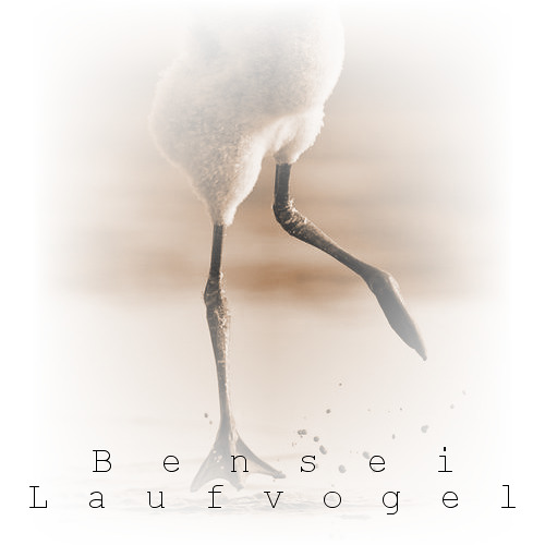 Bensei - Laufvogel // Original