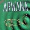 Arwana__Kunanti