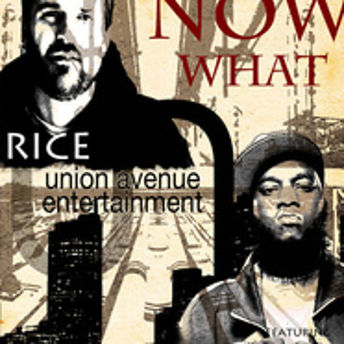 Brice Reese ft. Freeway - Now What (Prod. By Luka)