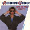 Robin Gibb - Boys Do Fall In Love (New Dub Mix)