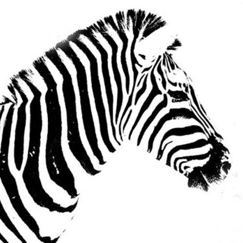 Zebra Skin