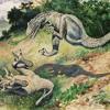 Animal Instinct Stephen Walking Album Cover
