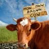 The Rocky Road to Dublin by How Now Brown Cow