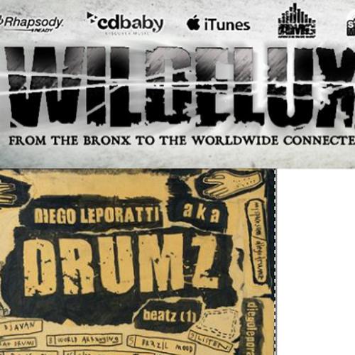 Drumz feat.Wildelux - Kashmir Valley