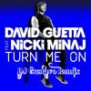 Download David Guetta ft Nicki Minaj - Turn Me On ( DJ Gustavo Remix) Mp3