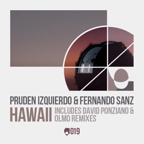 Pruden Izquierdo & Fernando Sanz_Hawaii_David Ponziano Rmx