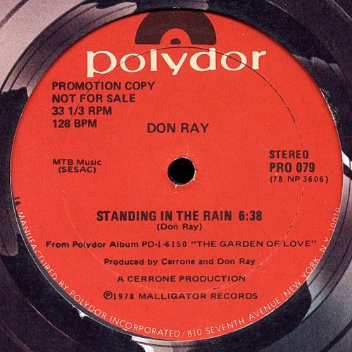 Don Ray - Standing in the rain (The Noodleman edit) 320