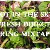 Fresh Direct Spring MixTape @DotInTheSkyMarina