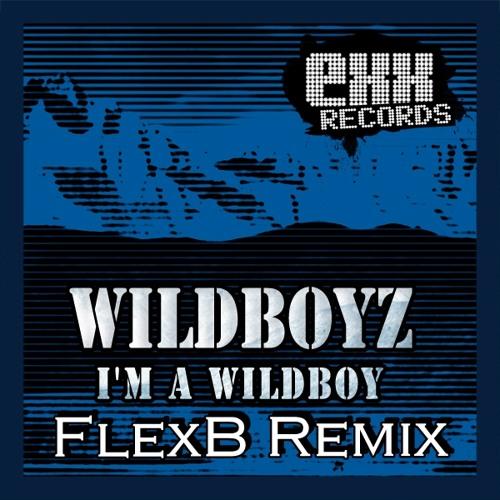 """Wildboyz - I'm A Wildboy (FlexB Remix) """"Remix Contest"""" [EXX Records]"""