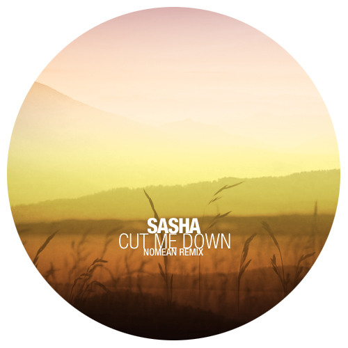 Sasha - Cut Me Down (Nomean Remix) :: Free Download :: Dj Friendy, Remastered Version