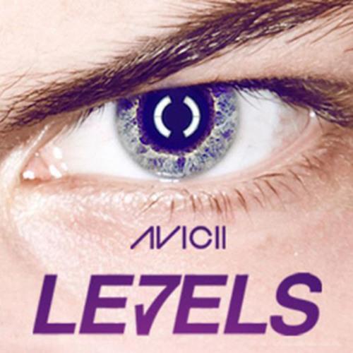 Avicii - Levels (Ricardo Mendes Remix)