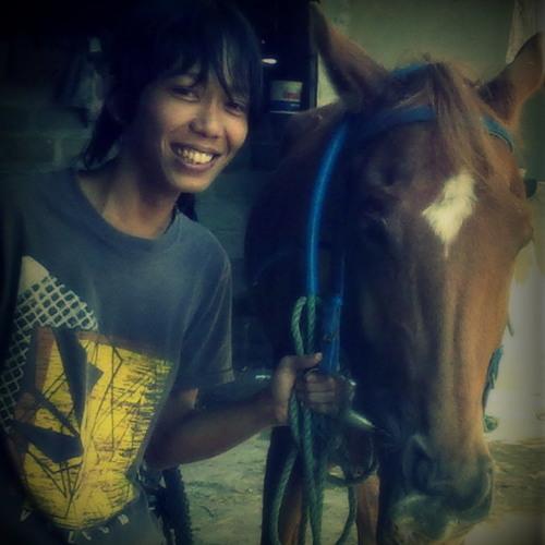 Johnny Solinger - Steel Horse