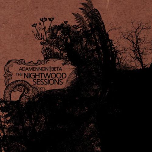 Adamennon & Beta - The NightWood Sessions