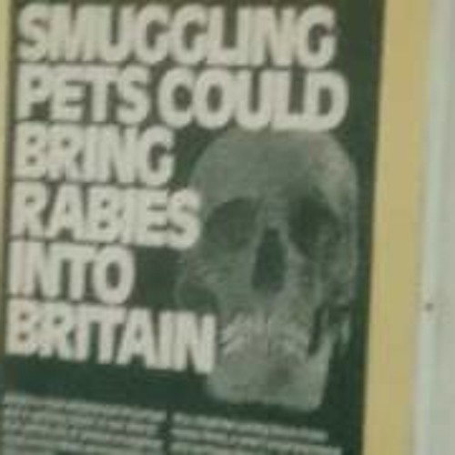 Rabies Warning