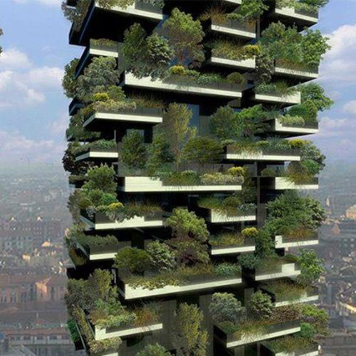תקציר סדנת אקולוגיה עירונית עתידנית