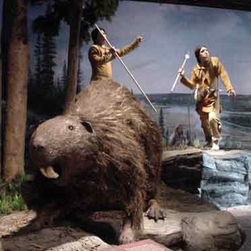 The Biggest Beaver