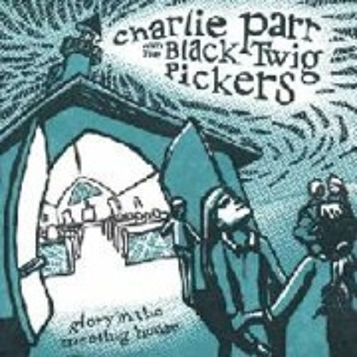charlie parr & the black twig pickers - there ain't no grave gonna hold my body down