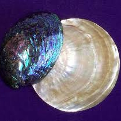 Health Shells (Elyonicle remix)