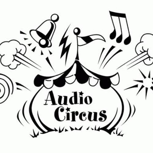 Audiocircus @ push yourself Güstrow 26.05.12
