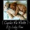CUPIDO ME MINTIO ( Baby Rasta & Grindo ) .-. Dj Loky Flow ( YoSoyElMejor )