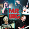Temperamental - Mr. Big